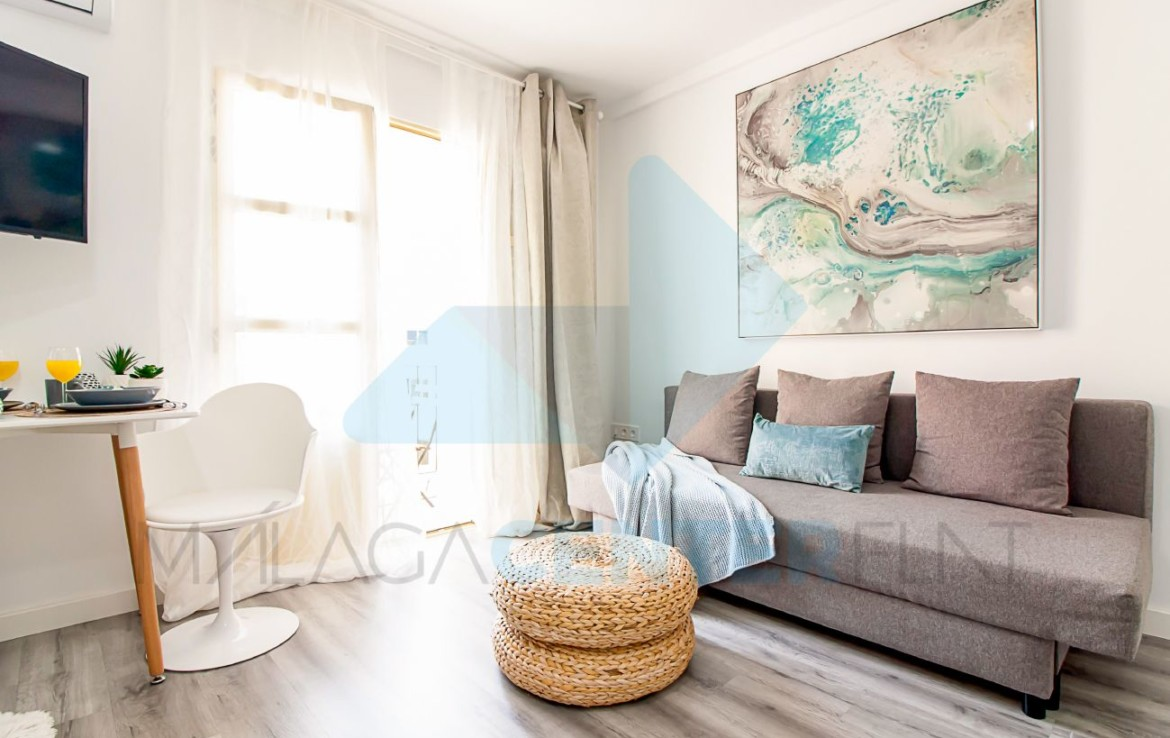 luxury apartment in cathedral malaga